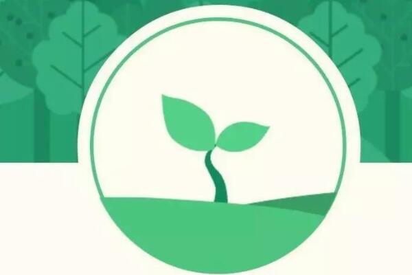 蚂蚁森林怎么获取能量?有哪些方法?