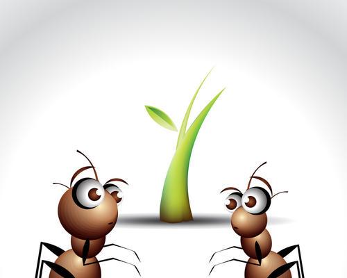怎样赚取蚂蚁会员积分?有什么方法?