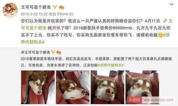 宠物界的第一网红狗:王思聪爱犬王可可淘宝开店年入3000万