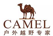 骆驼43分钟销售破2亿,能连冠吗?
