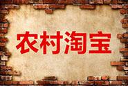 2017农村淘宝春耕<em>节</em>拼车购活动<em>玩法</em>