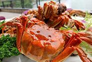 天猫生鲜数据:大闸蟹的消费主力军是这帮人