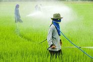 规则变更:淘宝农药行业标准有新调整